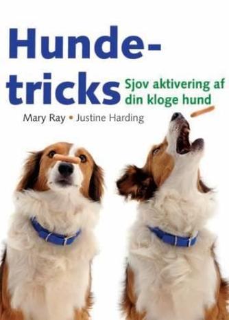 : Hundetricks : sjov aktivering af din kloge hund