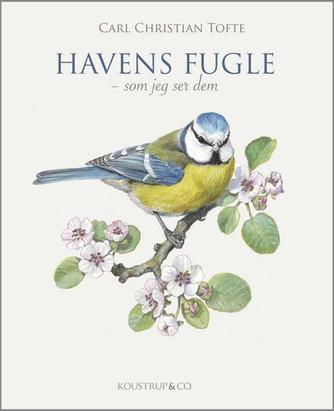 Carl Christian Tofte: Havens fugle - som jeg ser dem