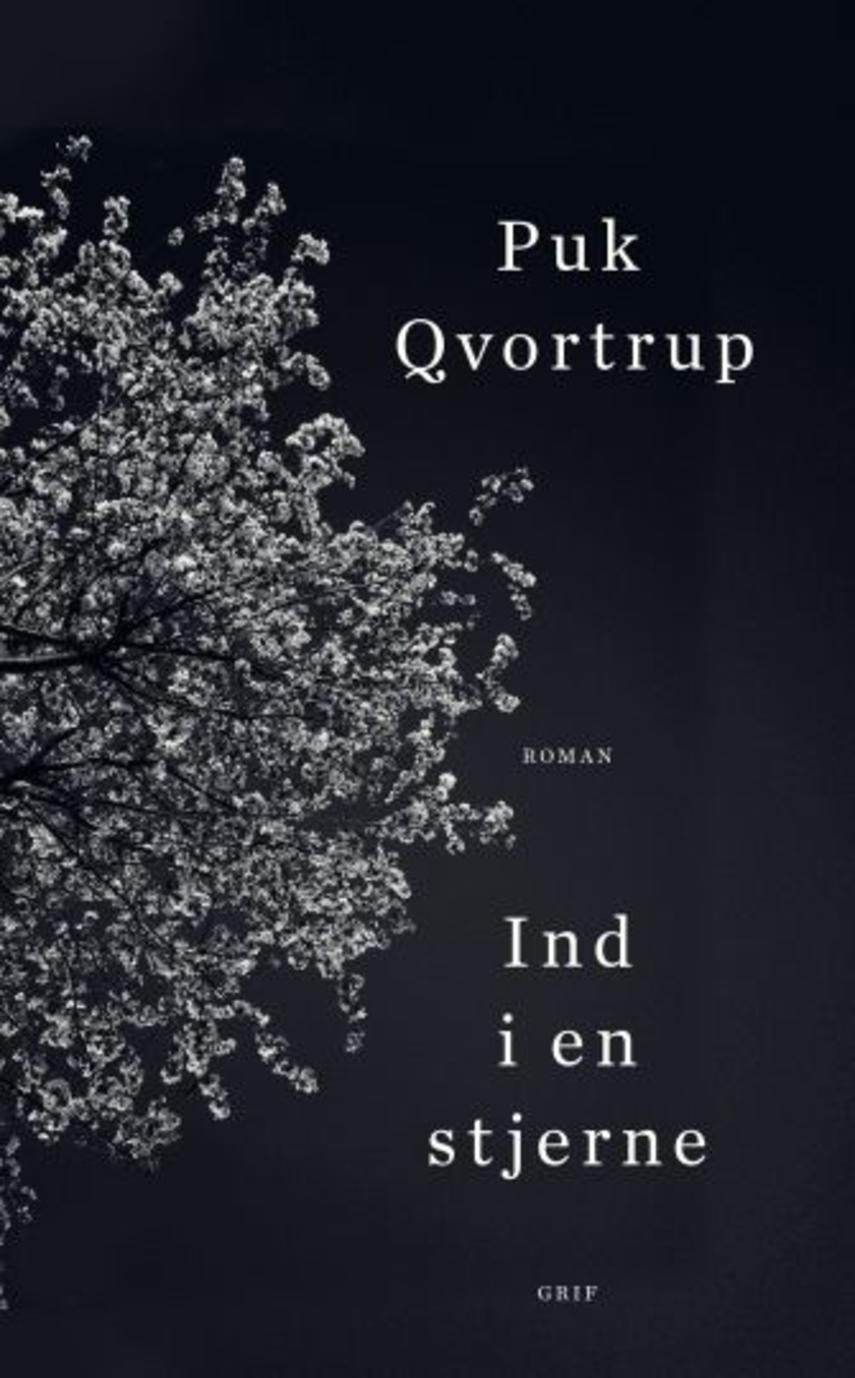 """Puk Qvortrup: Ind i en stjerne : roman (""""LÆSETASKE"""" - udlånes kun til Læsetaske) (Læsetaske)"""
