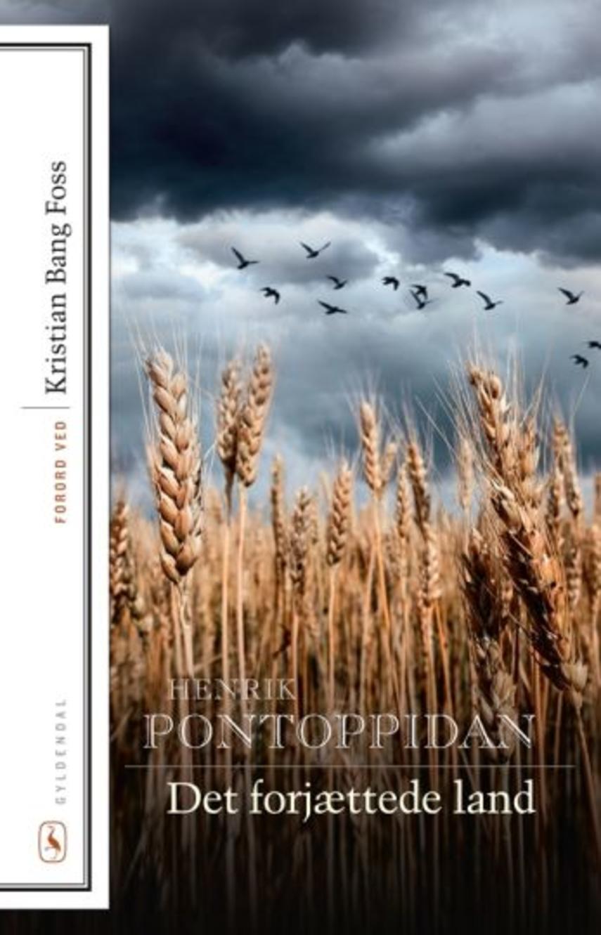 Henrik Pontoppidan: Det forjættede land