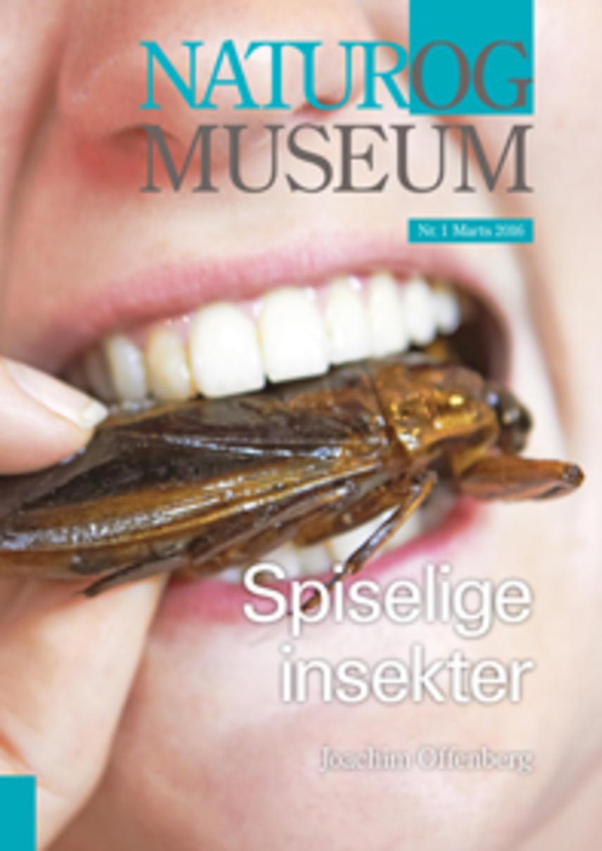 Joachim Offenberg: Spiselige insekter