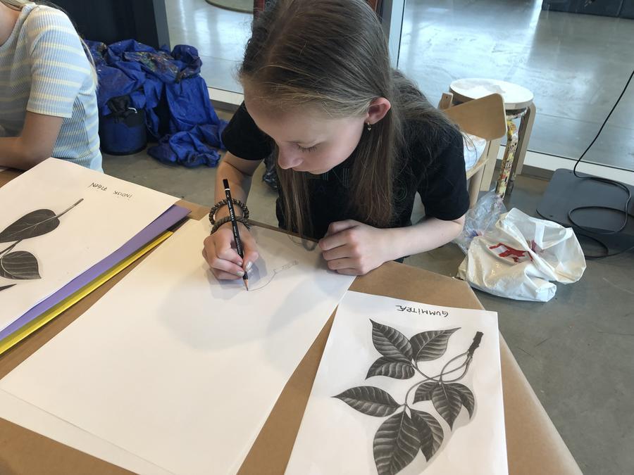 Pige tegner en plante