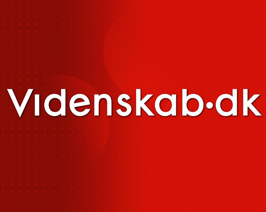 Videnskab.dk