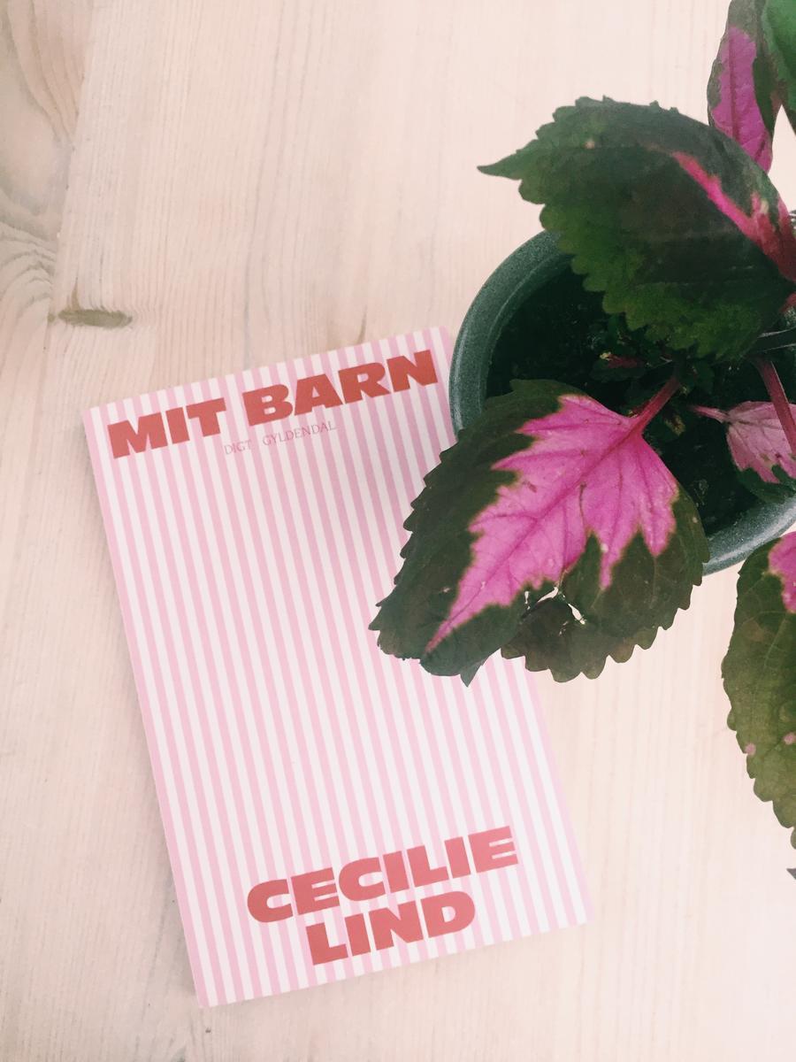 Forside af bogen Mit barn