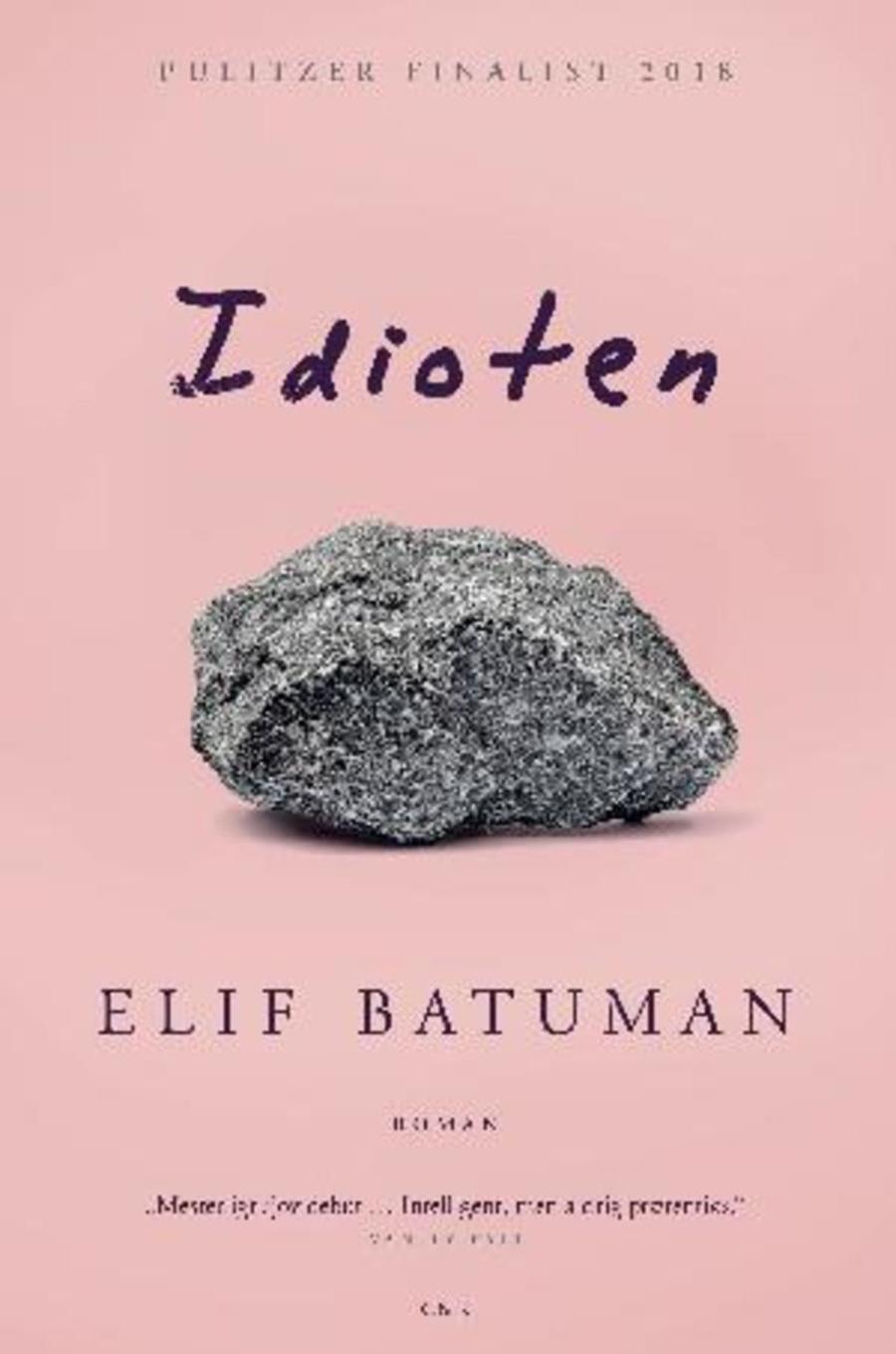 Forside af bogen Idioten