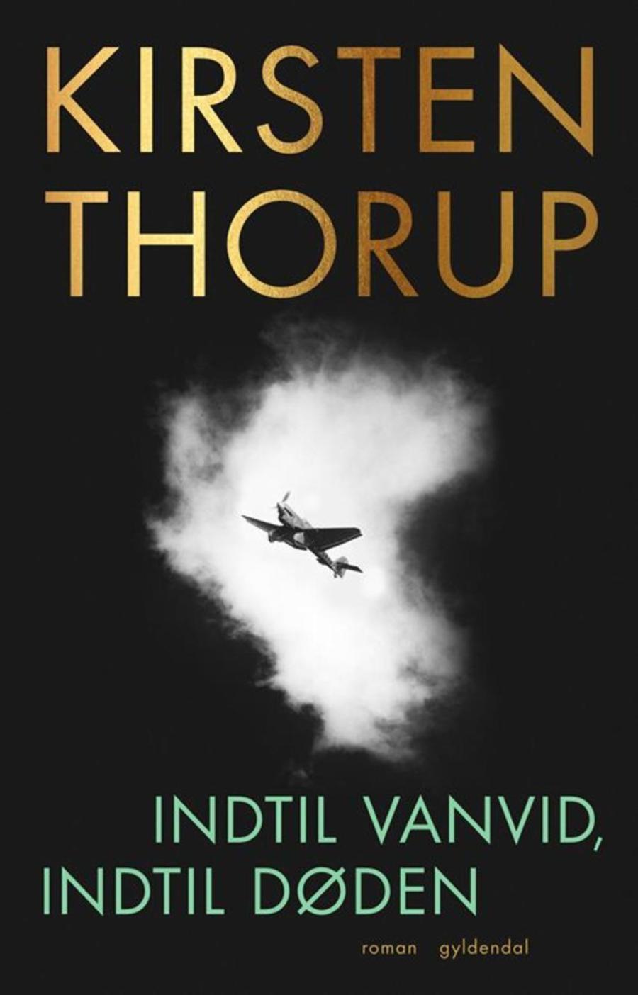 Billede af bogforsiden af Indtil vanvid, indtil døden af Kirsten Thorup